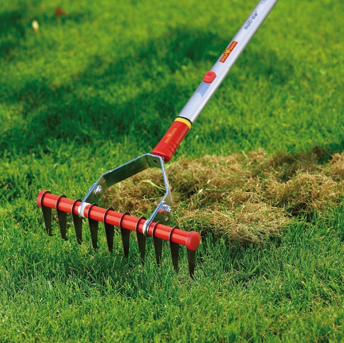 Подготовка почвы 1 м²